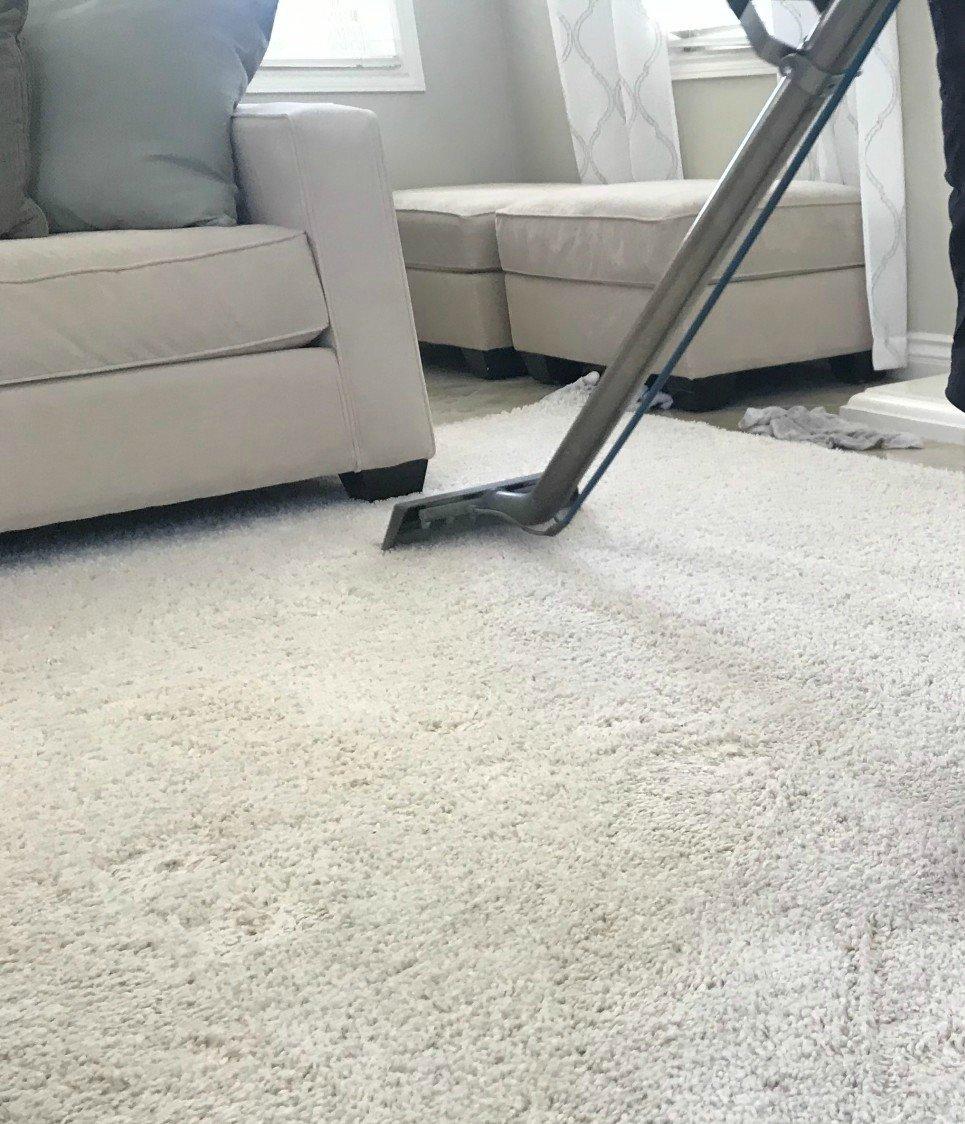 Carpet Services Marketing